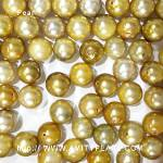 6217 saltwater half-drilled pearl about 7-8mm gold color.jpg